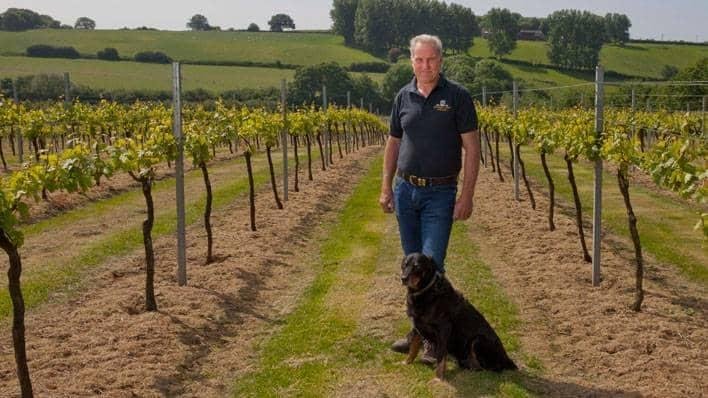 British winemaker Charles Palmer in vineyard